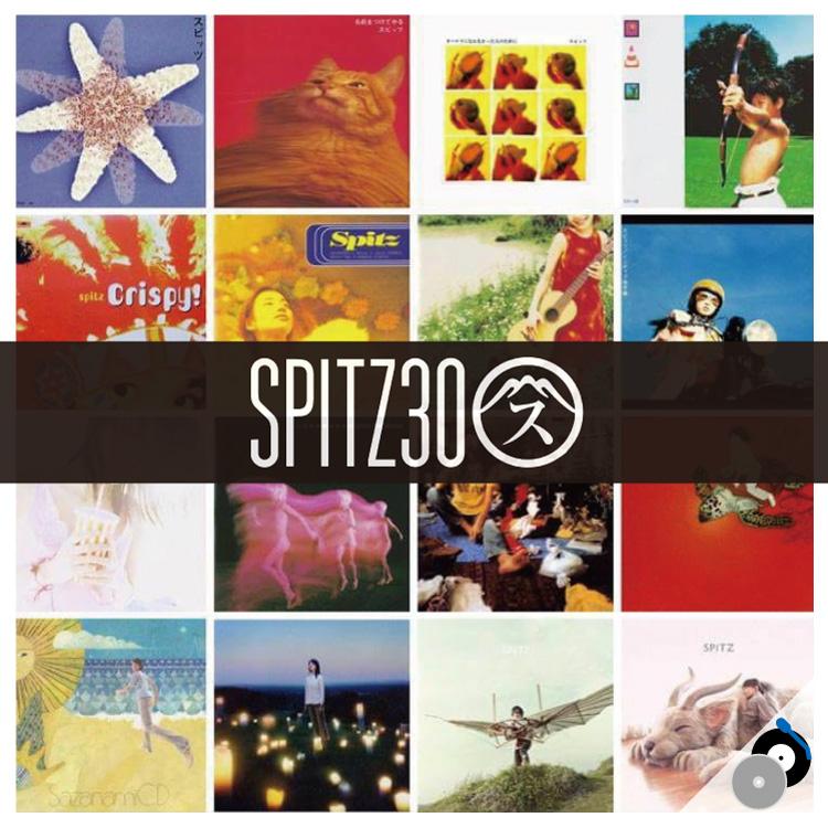 dd_Spitz_2017_750.jpg